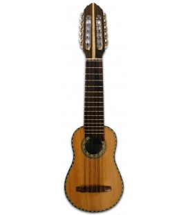 Charango for study + Free aguayo case